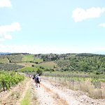 Strolling Through the countryside outside Radda-in-Chianti