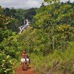 Excursión a caballo hasta la cascada
