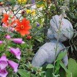 Claudia's garden.