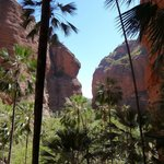 Mini Palm Gorge - walk on Day 2