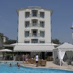 Foto de Hotel Delle Mimose