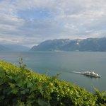 Une escapade le long des vignobles de Lavaux-UNESCO !