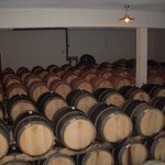 Oak Barrels for Red Wines