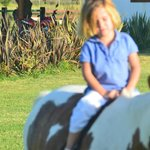 Little ones will also enjoy the stay and learn their first steps in Polo