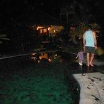 Nightime pool view
