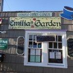 Emilia's Garden