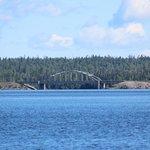 Bridge on TransCanada