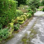 More topiary animals