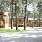 Jellystone has a huge selection of cabins and vacation rentals to choose from