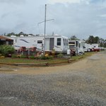 Beautiful RV sites throughout the resort
