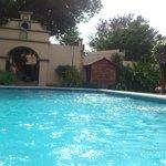 Su amplia piscina y parte de sus elegantes jardines