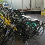 Rent a Bike at Cardy