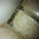Dreckige Ecke im Bad, wurde schon lange nicht mehr geputzt! Überall Haare