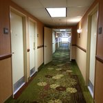 Bright Hallways lead to lovely rooms