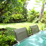 Lanai Table & Backyard