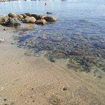 spiaggia di Marciana