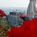 Tavoli immersi dalla rose