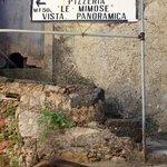 Photo de Le Mimose di Falanga e Santamaria