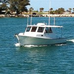 Wizard sportfishing is our latest addition to the fleet