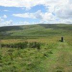 Shepherd's Cairn walk - from Alnham