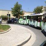The Green Train Tour