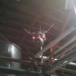 Keg Bull from Breckenridge Brewing Company