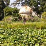 L'observatoire au jardin des plantes