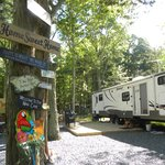 Make your rv site your own