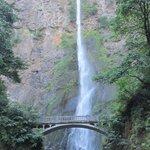 tallest falls