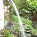 Chorro del Enguayabado- finca hotel Los Arrayanes