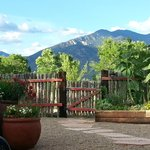 El Meze patio view