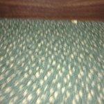Crumbs along bedframe