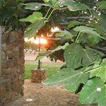 Photo de Borgo Console