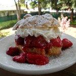 home made strawberry shortcake