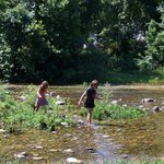 Cool fun in the creek on a hot day!
