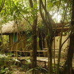 Jungle DBL bungalow 1