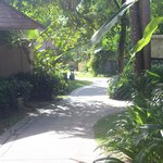 walking path to pool / beach