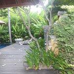 pool villa courtyard