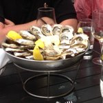 Selection of delicious Oysters