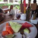 Bromeliads at breakfast