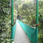 Hanging Bridges in La Fortuna