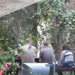 Beit Ben Yehuda garden