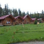 The new cabins