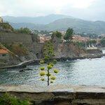 Vue de la terrasse du chemin qui mène au centre de Collioure