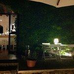 Terraza/jardín