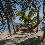 Beachside Relaxation