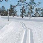 Fantastiska längdskidåknings spår