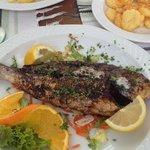 Gegrillter Fisch mit Beilagen