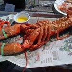 2lb lobster! yum!