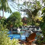 La piscine au centre des jardins